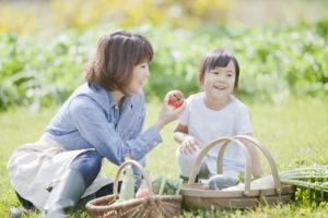 子育て 家 庭 家庭菜園